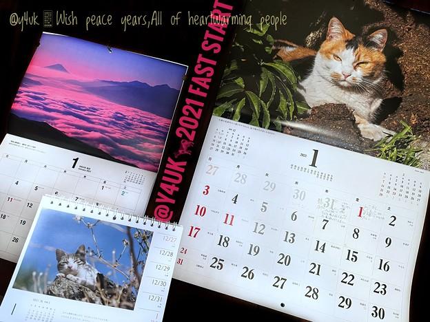 1.1#Hello2021.Wish peace years,All of heartwarming people.FastSpeedStartコロナ収束を願う岩合光昭にゃんこと(i12ProMax)