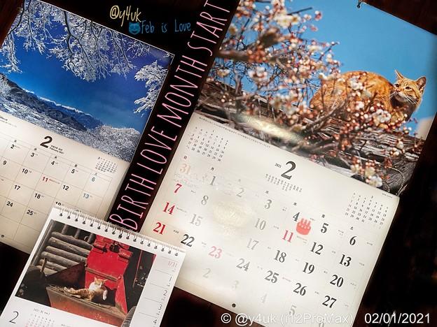 "Photos: もぅ2021年も2月1日毎月恒例カレンダーめくり""Birth Love Month Start, Feb is Love""お誕生月好きな芸能人マイペ似てる皆2月生まれバレンタイン立春と愛溢れるはずの月"