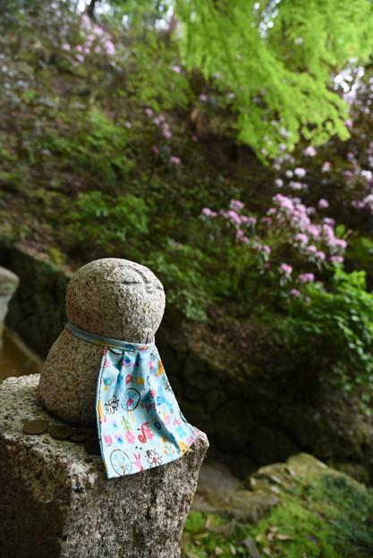 Photos: 岡寺祈り