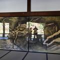 Photos: 天龍寺 龍に乗る!