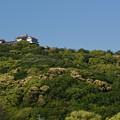 松山城を望む