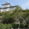Photos: 津山城 備中櫓