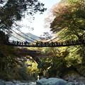 Photos: かずら橋!