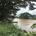 Photos: 大増水の国境の川 (8)