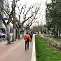 フェラーリと襄陽公園と新楽路 (2)