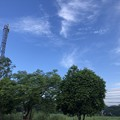 Photos: ある一日 (8)