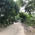 ミャンマー ヤンゴン (3)