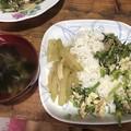 お昼ご飯 (1)