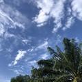 ヤンゴンの9月27日の空 (1)