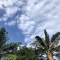 ヤンゴンの9月27日の空 (2)