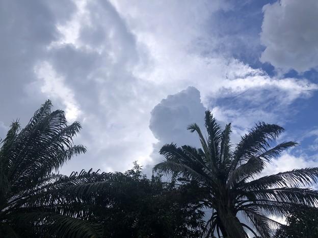 10月のヤンゴンの空 (3)