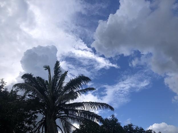 10月のヤンゴンの空 (4)