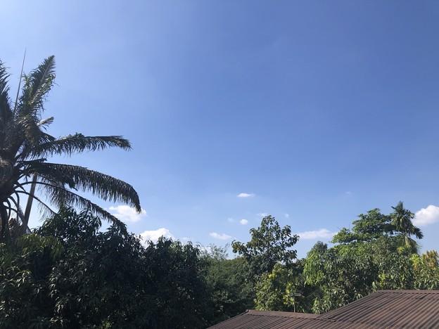 12月2日のヤンゴンの一風景 (1)