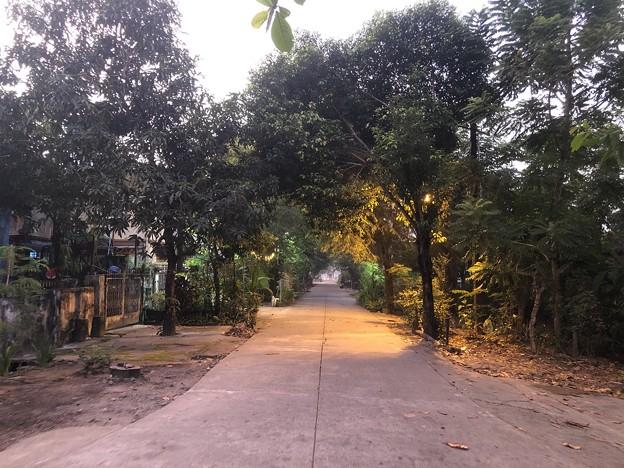 ヤンゴンの片田舎12月7日の今 (2)
