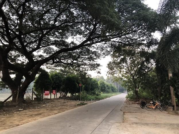 ヤンゴンの片隅で 12月11日 (4)