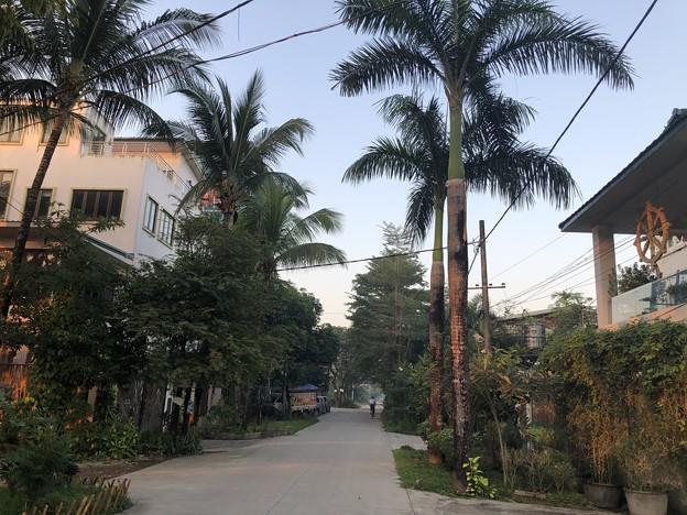 ヤンゴンの片隅で 12月11日 (11)
