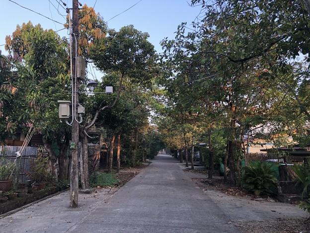 ヤンゴンの片隅で 12月11日 (14)