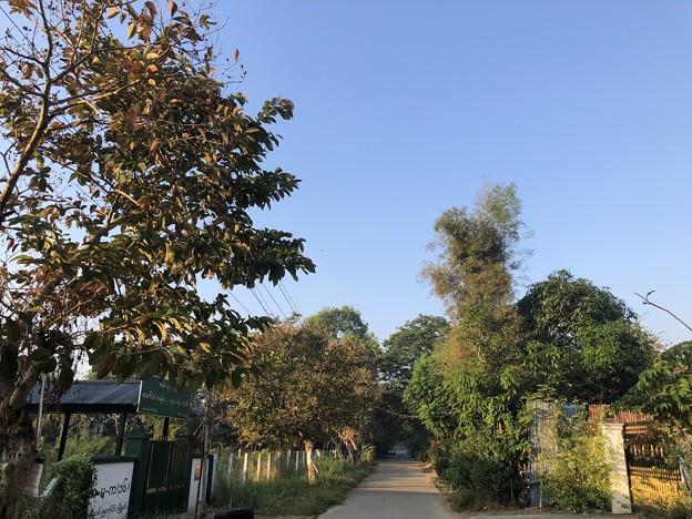 ヤンゴンの片隅で 12月11日 (18)