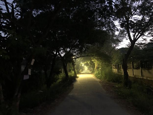 Photos: ヤンゴンの片隅の夜明け前 12月12日  (3)