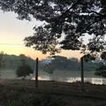 Photos: ヤンゴンの片隅の夜明け前 12月12日  (13)