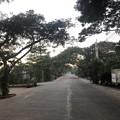 Photos: 12月13日のヤンゴンの片隅で (11)