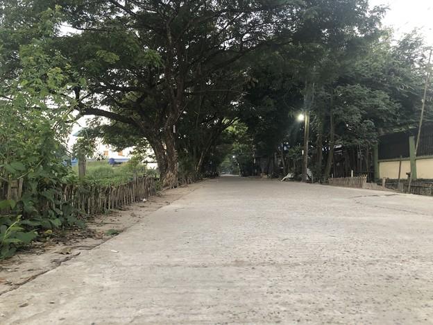 12月13日のヤンゴンの片隅で (9)