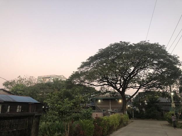12月13日のヤンゴンの片隅で (5)
