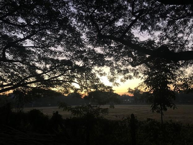 12月13日のヤンゴンの片隅で (2)