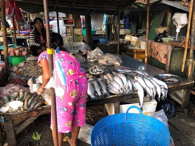 12月22日 魚の配達 (5)