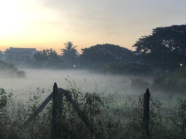 ヤンゴンの朝霧 12月23日 (8)