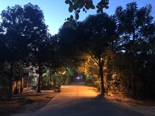 ヤンゴンの朝霧 12月23日 (5)