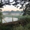 ヤンゴンの朝霧 12月23日 (2)