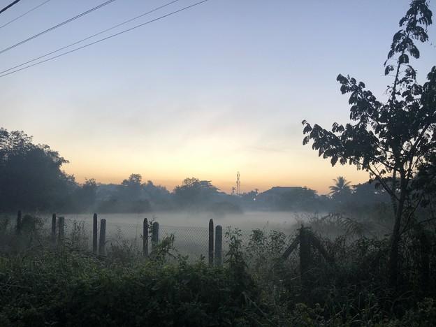 ヤンゴンの朝霧 12月23日 (6)