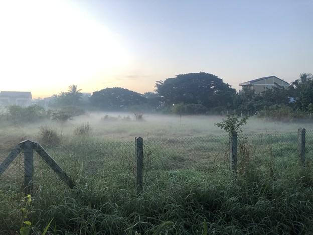 Photos: ヤンゴンの朝霧 12月23日 (1)
