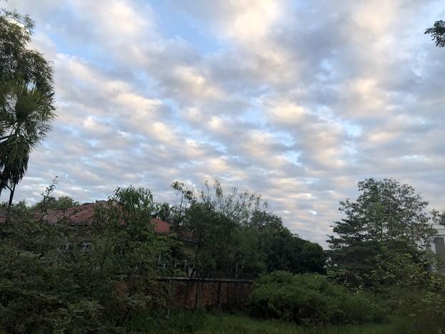 曇り空のヤンゴン 12月26日 (6)