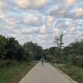 Photos: 曇り空のヤンゴン 12月26日 (5)