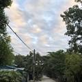 Photos: 曇り空のヤンゴン 12月26日 (3)