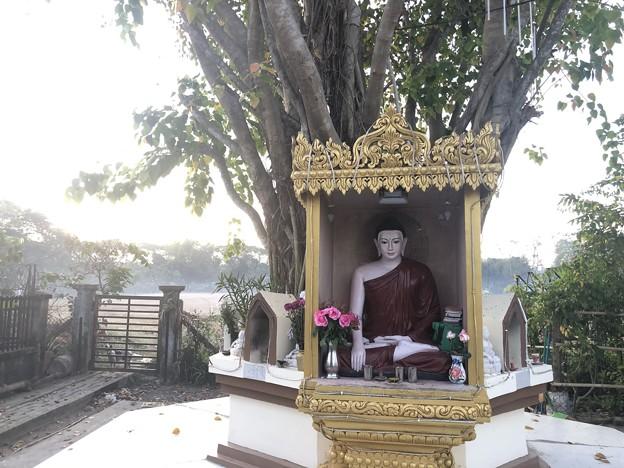 Photos: 12月30日の早朝のヤンゴン (6)