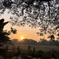 Photos: 1月4日のヤンゴンの朝 (17)