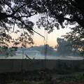 Photos: 1月5日のヤンゴンの朝 (10)