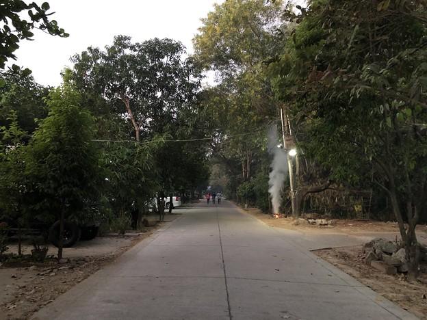 1月5日のヤンゴンの朝 (7)
