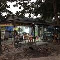 Photos: 1月5日のヤンゴンの朝 (6)