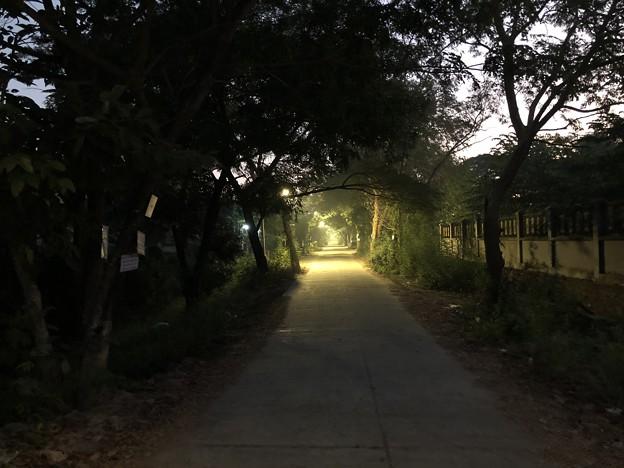 1月5日のヤンゴンの朝 (4)