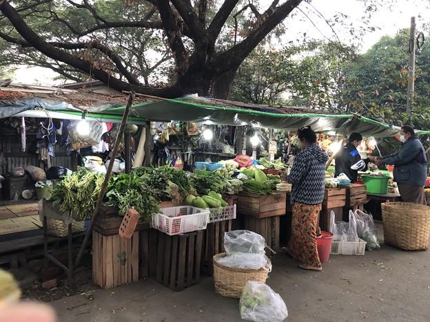 1月5日のヤンゴンの朝 (11)