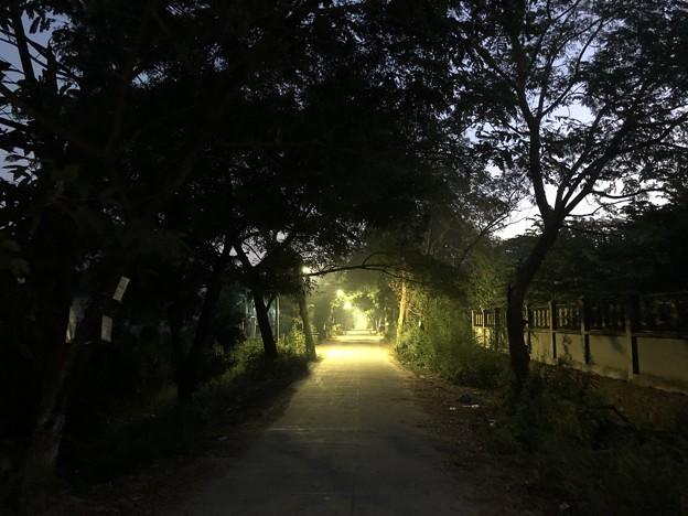 1月7日のヤンゴンの朝 (3)