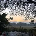 Photos: 1月7日のヤンゴンの朝 (18)