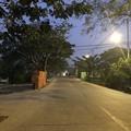 Photos: 1月15日のヤンゴンの朝 (4)