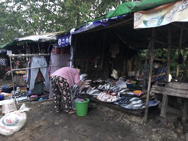 1月15日のヤンゴンの朝 (11)
