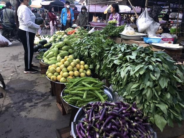 1月15日のヤンゴンの朝 (9)