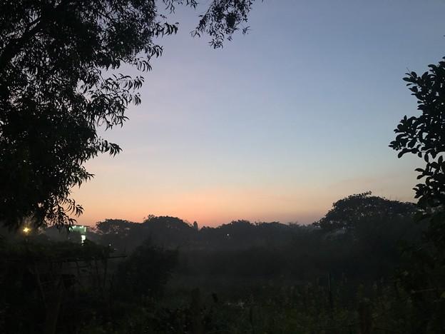 1月15日のヤンゴンの朝 (2)